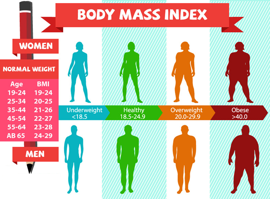 Body Mass Index Calculator For Men Women